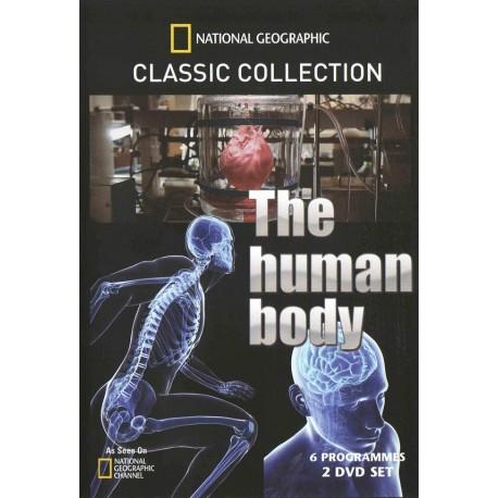 مجموعه بدن انسان