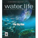 آبی بیكران – زندگی در آب
