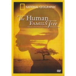 درخت خانوادگی انسان