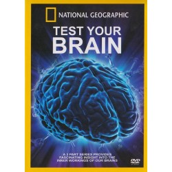 مغز شما چگونه كار ميكند