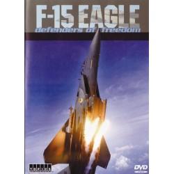 اف-15 عقاب آسمان