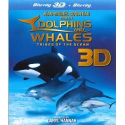 نهنگها و دلفینها