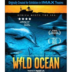 اقیانوس وحشی، جایی كه اقیانوس به آفریقا میرسد
