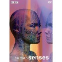 حواس پنجگانه انسان (بینایی، شنوایی، بویایی، چشایی، لامسه(