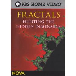 فراكتال – به دنبال ابعاد پنهان