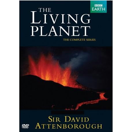 سیارهی زنده