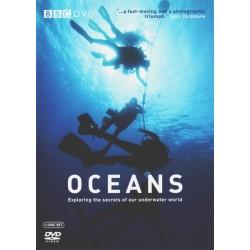 اقیانوس