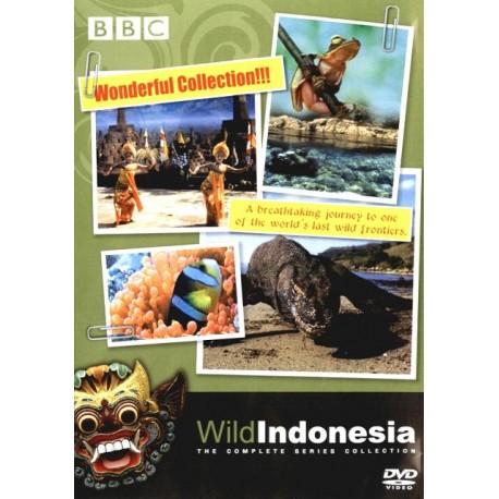 طبیعت وحشی اندونزی