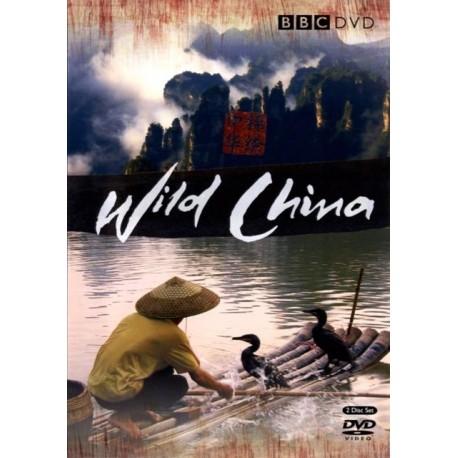 طبیعت وحشی چین