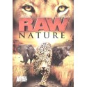 طبیعت وحشی