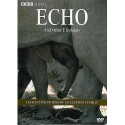 فيلها... اكو و سايرين