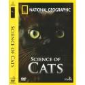 دانش گربهها