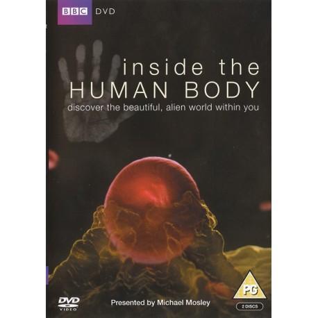 درون بدن انسان