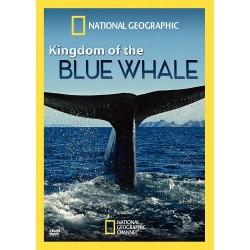 نهنگ آبی  Blue Whale